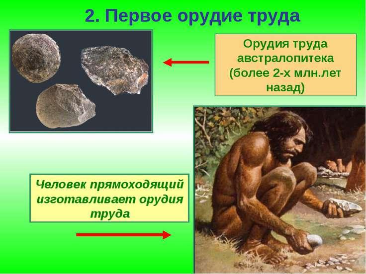 2. Первое орудие труда Орудия труда австралопитека (более 2-х млн.лет назад) ...