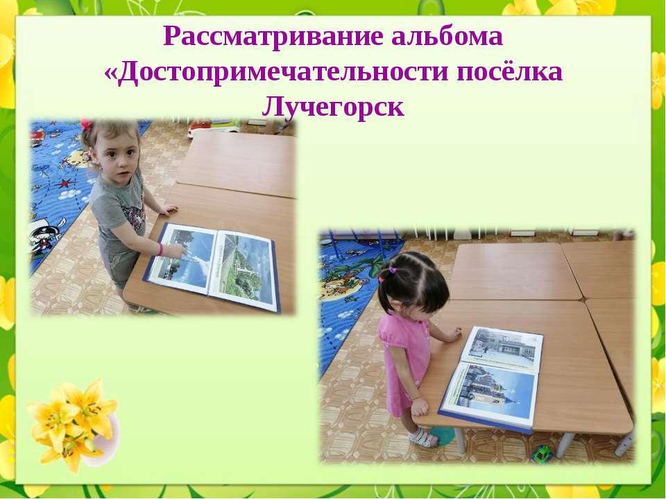 Рассматривание альбома «Достопримечательности посёлка Лучегорск