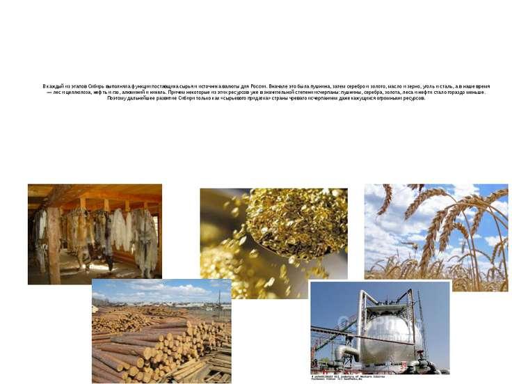 В каждый из этапов Сибирь выполняла функции поставщика сырья и источника валю...