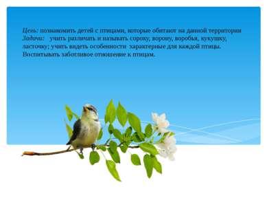 Цель: познакомить детей с птицами, которые обитают на данной территории Задач...