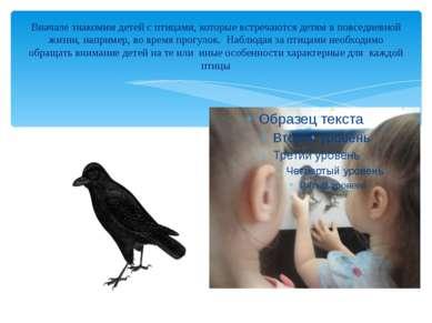 Вначале знакомим детей с птицами, которые встречаются детям в повседневной жи...