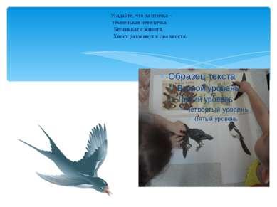 Угадайте, что за птичка – тёмненькая невеличка. Беленькая с живота, Хвост раз...