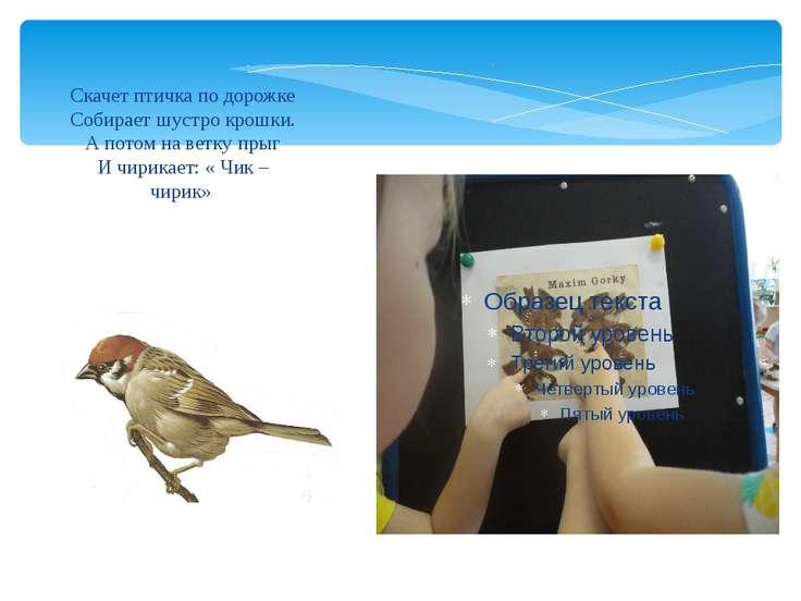 Скачет птичка по дорожке Собирает шустро крошки. А потом на ветку прыг И чири...
