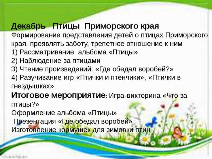 Декабрь Птицы Приморского края Формирование представления детей о птицах Прим...