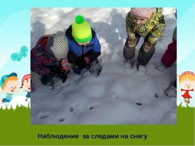Наблюдение за следами на снегу