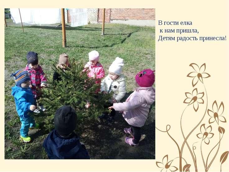 В гости елка к нам пришла, Детям радость принесла!