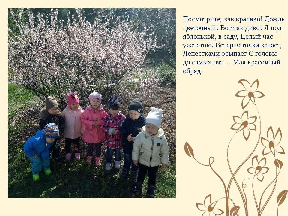 Посмотрите, как красиво! Дождь вишневый! Вот так диво! Я под яблонькой, в сад...