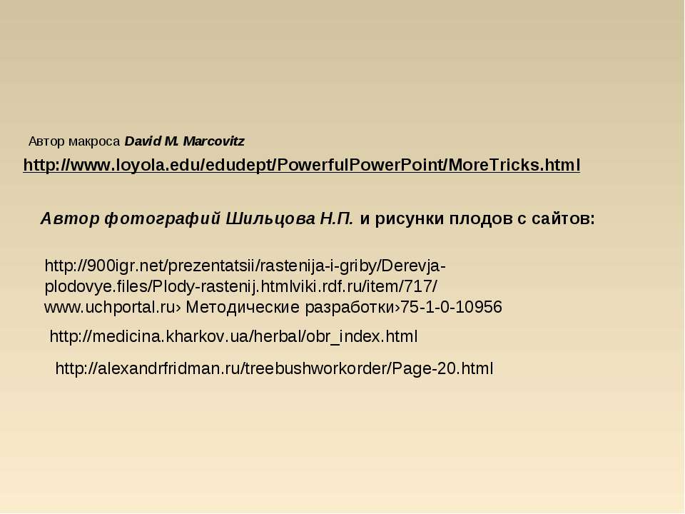 Автор макроса David M. Marcovitz http://www.loyola.edu/edudept/PowerfulPowerP...