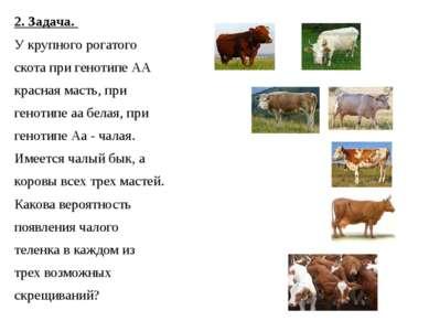 2. Задача. У крупного рогатого скота при генотипе АА красная масть, при генот...