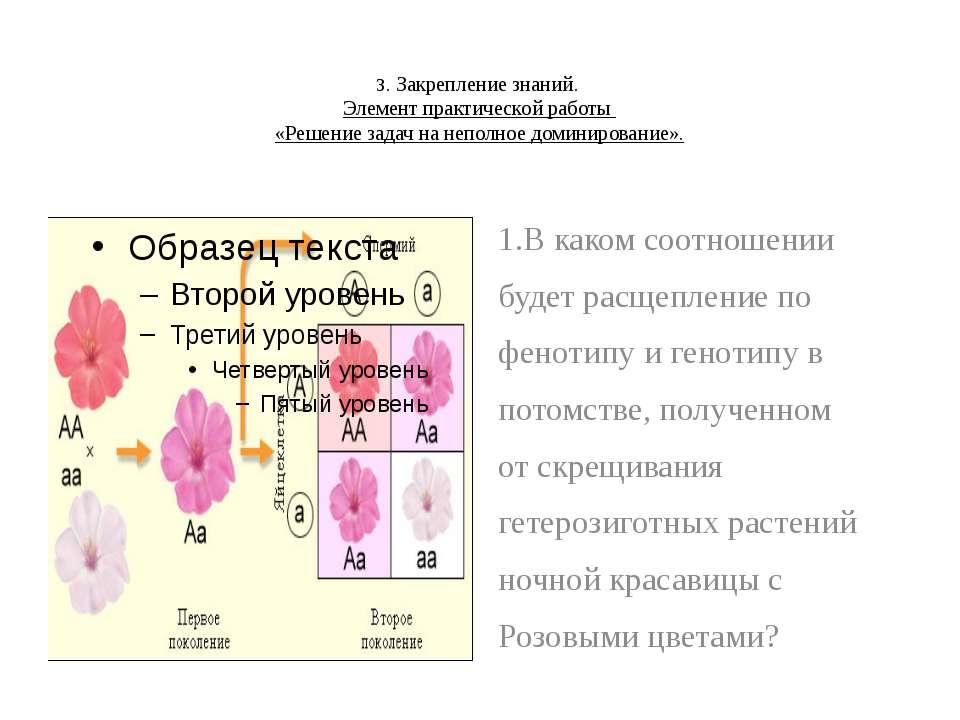 3. Закрепление знаний. Элемент практической работы «Решение задач на неполное...