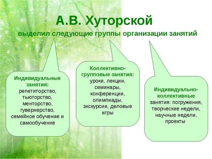 А.В. Хуторской выделил следующие группы организации занятий Индивидуальные за...