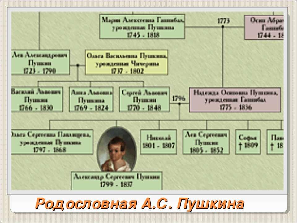 Родословная А.С. Пушкина