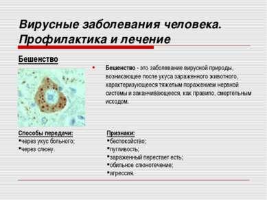Бешенство - это заболевание вирусной природы, возникающее после укуса заражен...