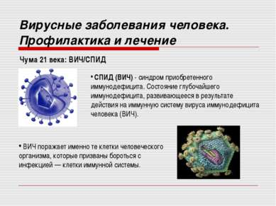Чума 21 века: ВИЧ/СПИД Вирусные заболевания человека. Профилактика и лечение ...
