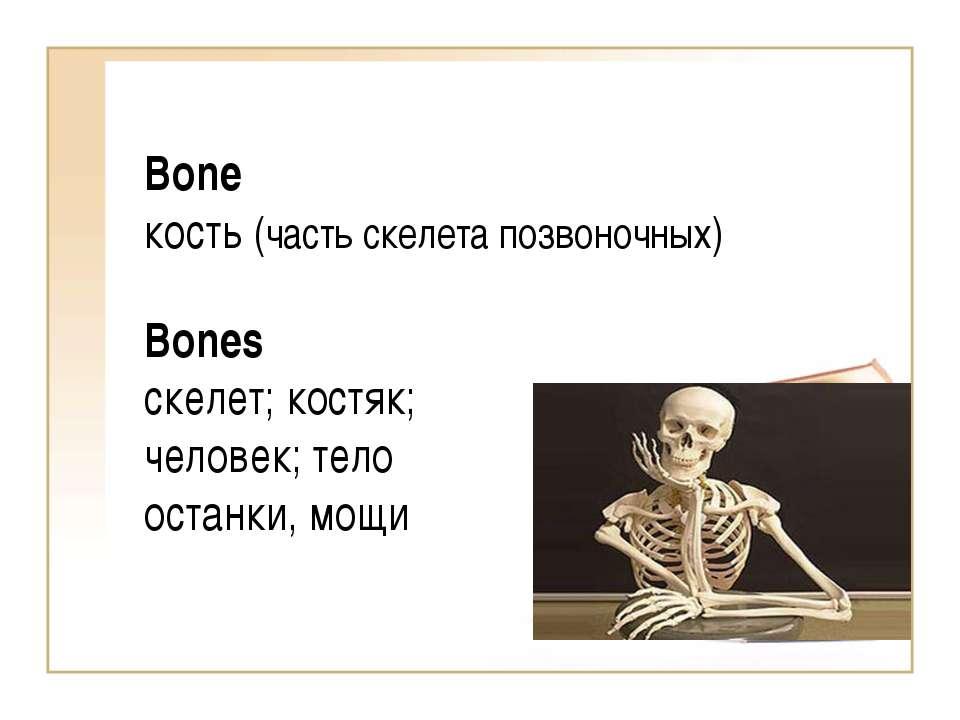 Bone кость (часть скелета позвоночных) Bones скелет; костяк; человек; тело ос...