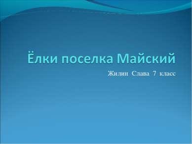 Жилин Слава 7 класс