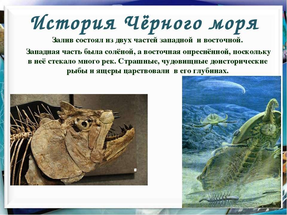 История Чёрного моря Залив состоял из двух частей западной и восточной. Запад...