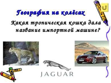 География на колёсах Какая тропическая кошка дала название импортной машине?