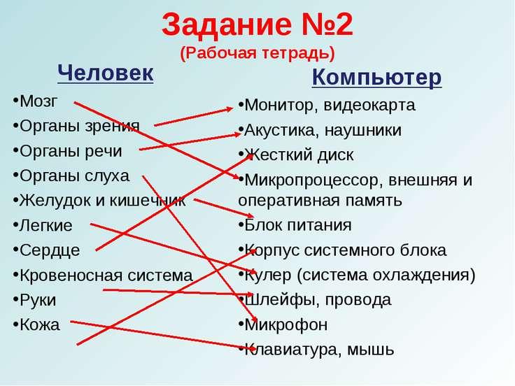 Задание №2 (Рабочая тетрадь) Человек Мозг Органы зрения Органы речи Органы сл...