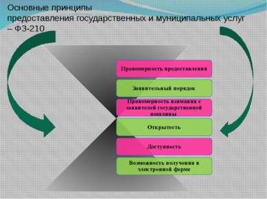 Основные принципы предоставления государственных и муниципальных услуг – ФЗ-210
