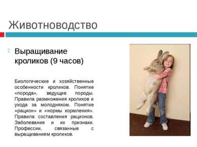 Животноводство Выращивание кроликов (9 часов) Биологические и хозяйственные о...