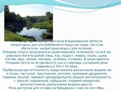 От города Щёлкова до притоков Владимирской области непригодны для употреблени...
