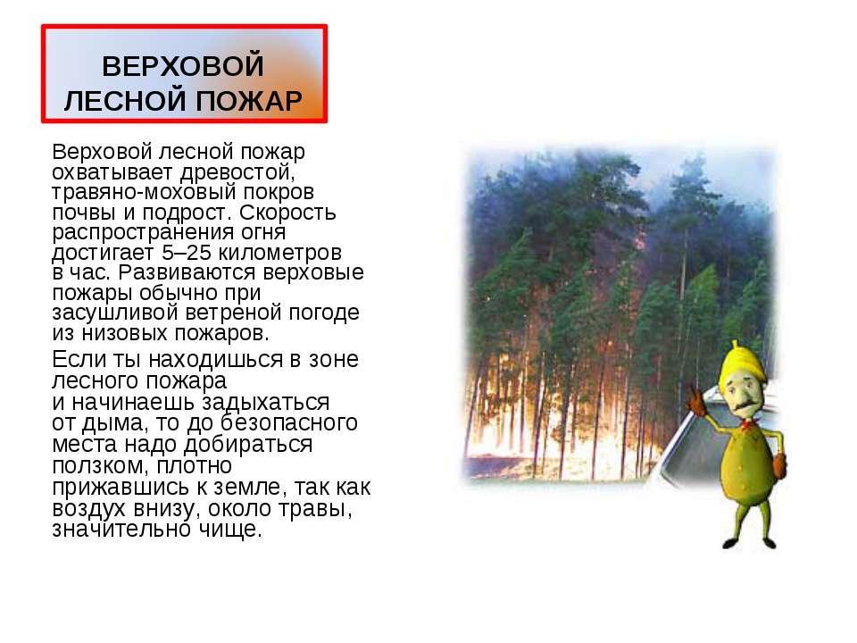 Верховой лесной пожар охватывает древостой, травяно-моховый покров почвы ипо...