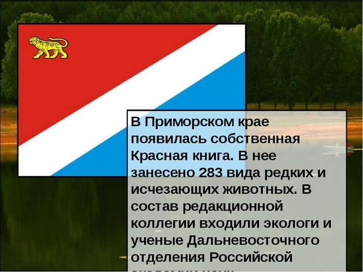 В Приморском крае появилась собственная Красная книга. В нее занесено 283 вид...