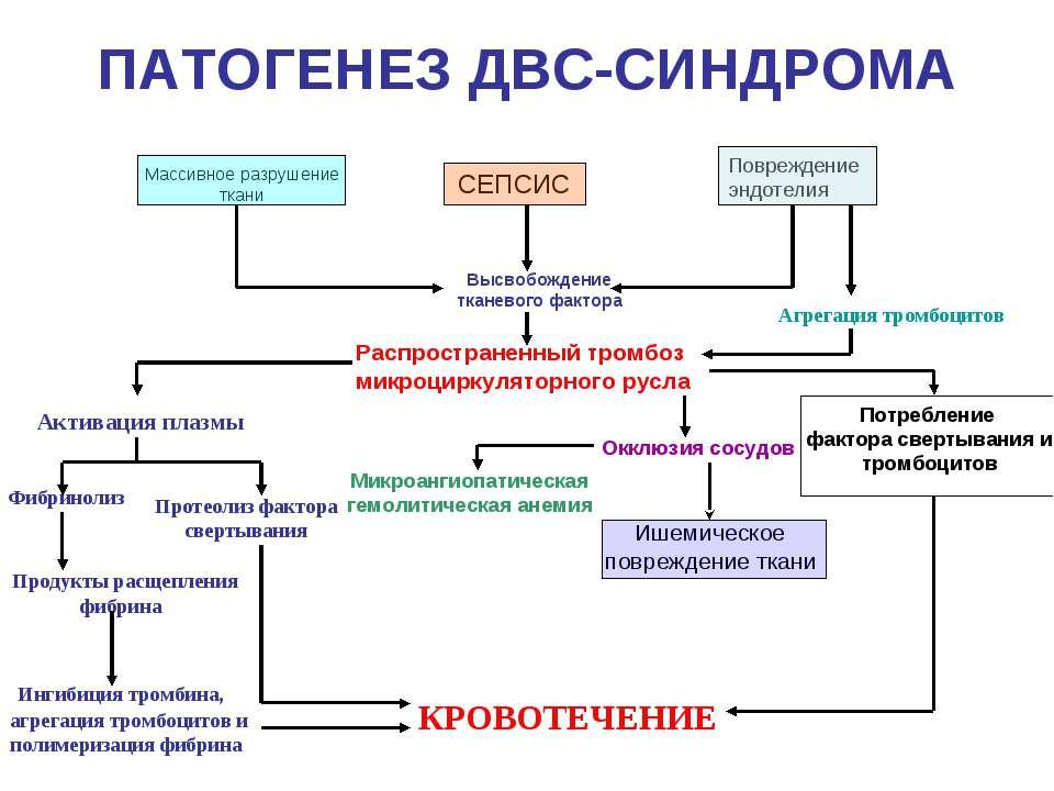 ПАТОГЕНЕЗ ДВС-СИНДРОМА СЕПСИС Повреждение эндотелия Массивное разрушение ткан...