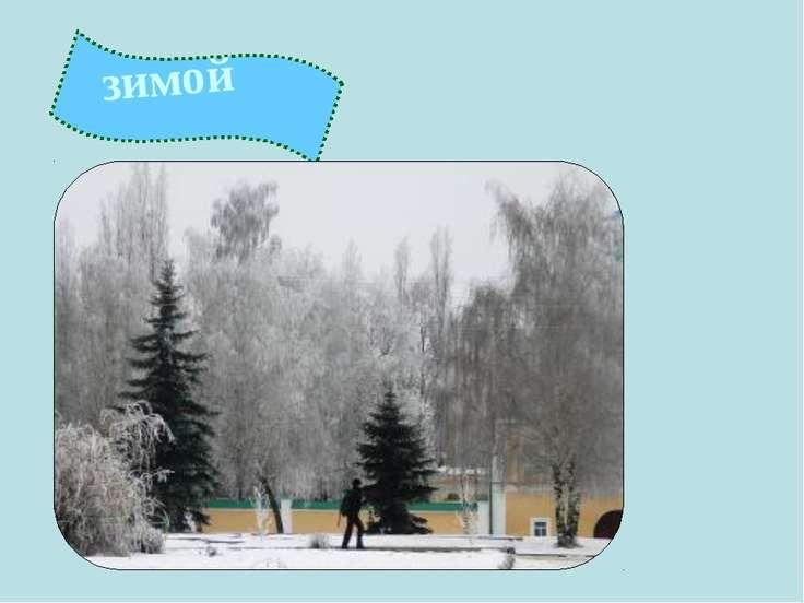 зимой