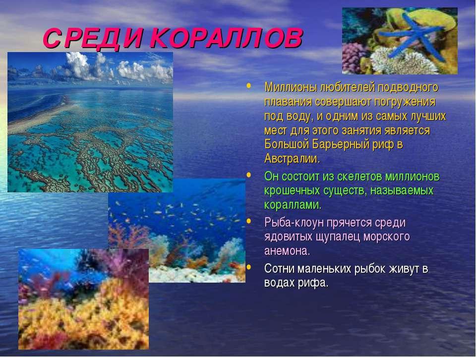 СРЕДИ КОРАЛЛОВ Миллионы любителей подводного плавания совершают погружения по...