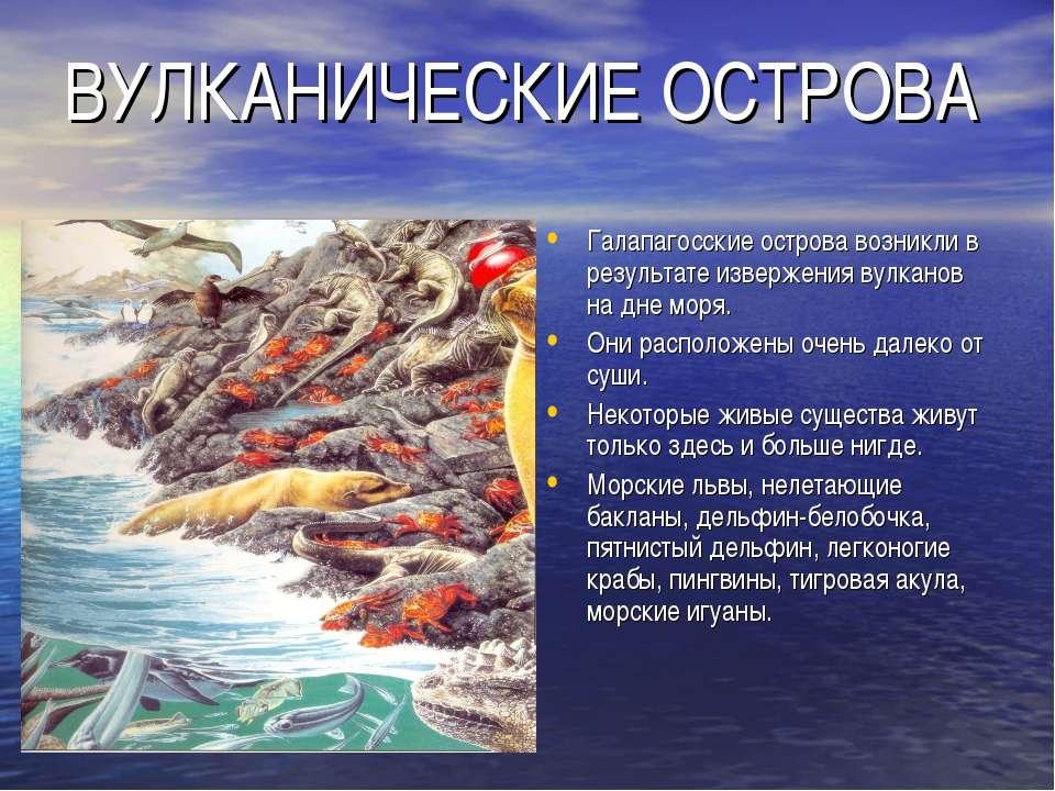 ВУЛКАНИЧЕСКИЕ ОСТРОВА Галапагосские острова возникли в результате извержения ...