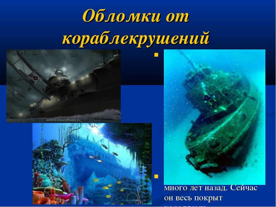 Обломки от кораблекрушений Совершая погружение для исследования остатков зато...