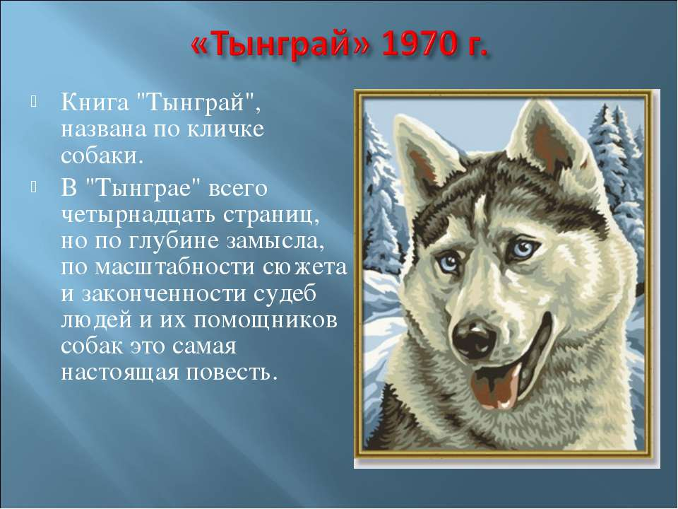 """Книга """"Тынграй"""", названа по кличке собаки. В """"Тынграе"""" всего четырнадцать стр..."""