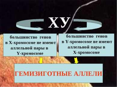 большинство генов в Х-хромосоме не имеют аллельной пары в Y-хромосоме большин...