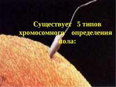 Существует 5 типов хромосомного определения пола:
