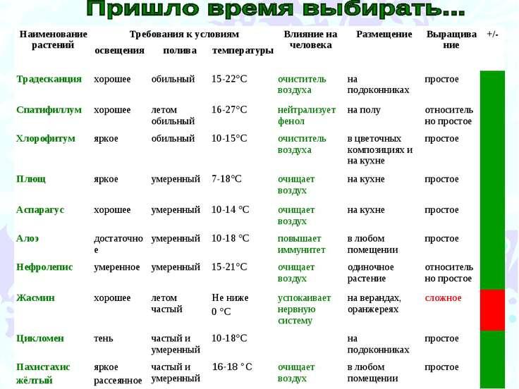 Наименование растений Требования к условиям Влияние на человека Размещение Вы...