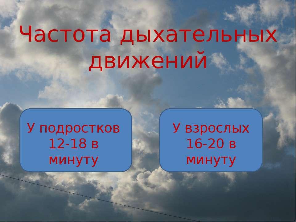 Частота дыхательных движений У подростков 12-18 в минуту У взрослых 16-20 в м...