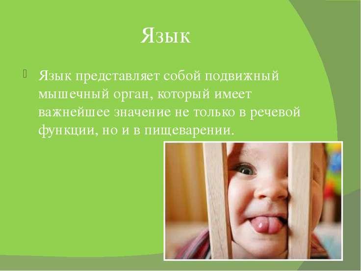 Язык Язык представляет собой подвижный мышечный орган, который имеет важнейше...