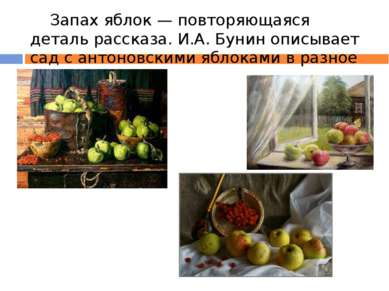 Запах яблок — повторяющаяся деталь рассказа. И.А. Бунин описывает сад с антон...
