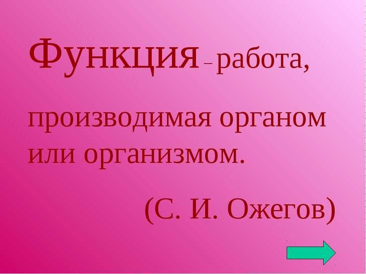 Функция – работа, производимая органом или организмом. (С. И. Ожегов)