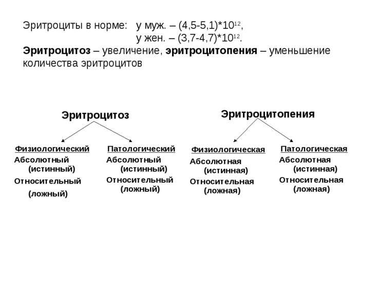 Эритроциты в норме: у муж. – (4,5-5,1)*1012, у жен. – (3,7-4,7)*1012. Эритроц...
