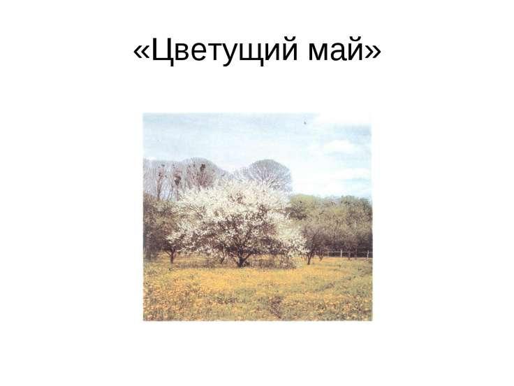«Цветущий май»
