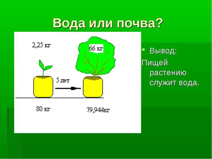 Вода или почва? Вывод: Пищей растению служит вода.