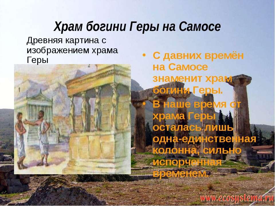 Храм богини Геры на Самосе Древняя картина с изображением храма Геры С давних...