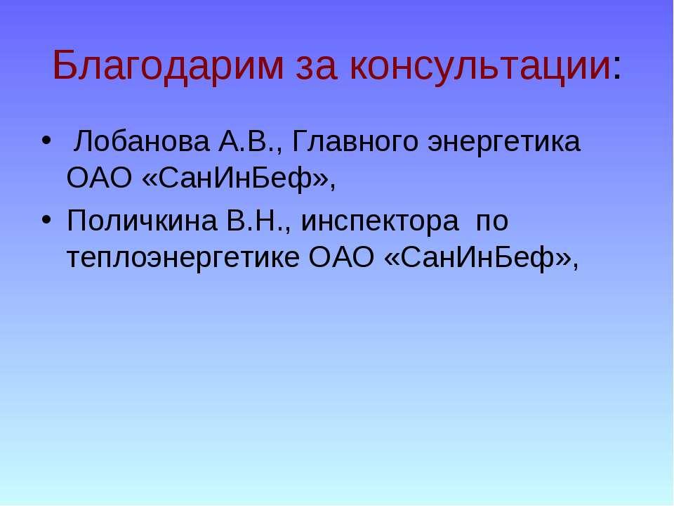 Благодарим за консультации: Лобанова А.В., Главного энергетика ОАО «СанИнБеф»...