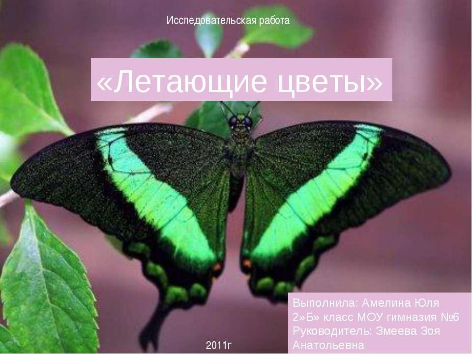 «Летающие цветы» Выполнила: Амелина Юля 2»Б» класс МОУ гимназия №6 Руководите...