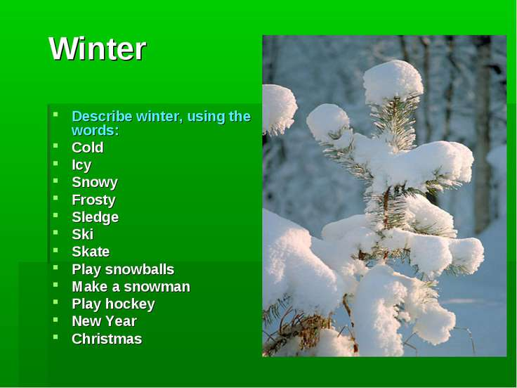 Winter Describe winter, using the words: Cold Icy Snowy Frosty Sledge Ski Ska...