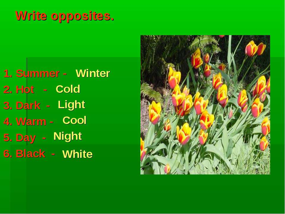 Write opposites. 1. Summer - 2. Hot - 3. Dark - 4. Warm - 5. Day - 6. Black -...