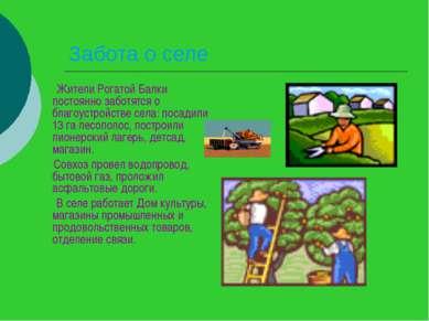 Забота о селе Жители Рогатой Балки постоянно заботятся о благоустройстве села...